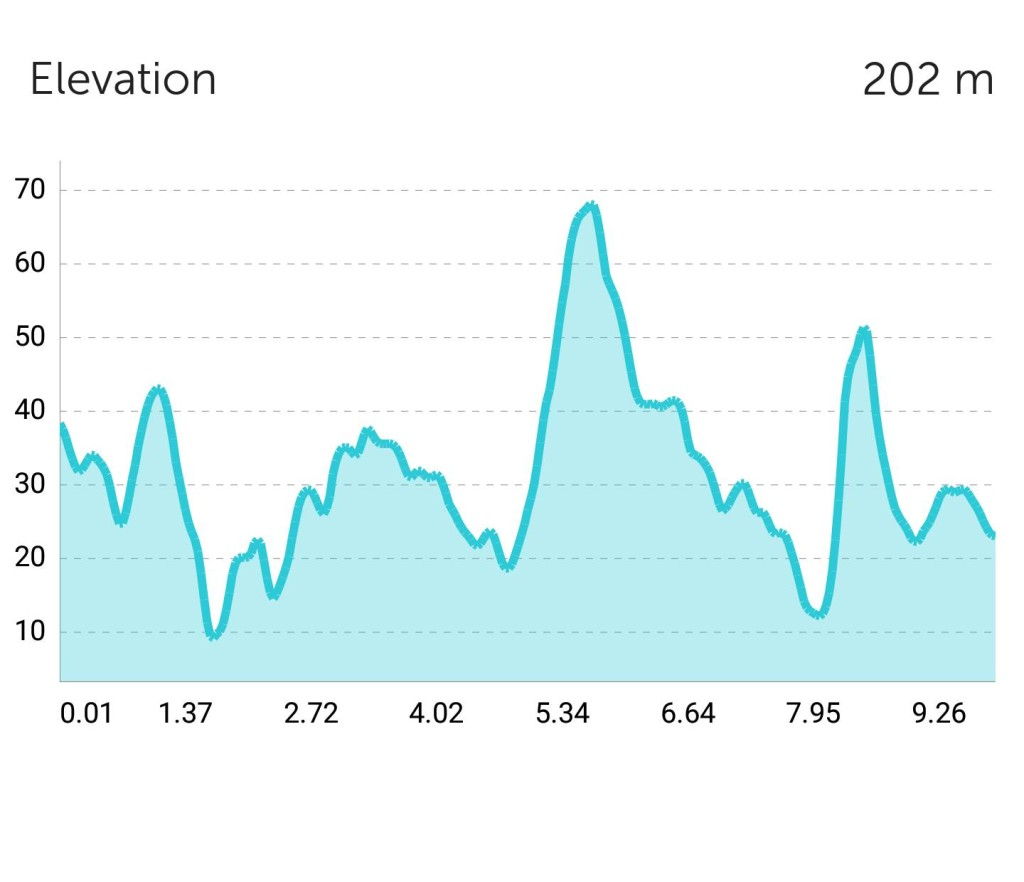Runners found the route very hilly. [Image by Yi Heng]