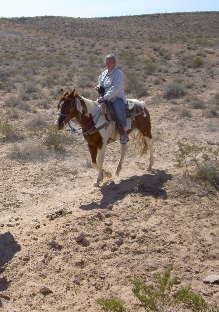 A 2006 photo of Stewart riding a horse in the Arizona desert.