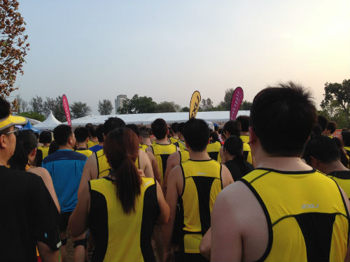 The 2XU Compression Run took place this morning. Here are my impressions of the race.