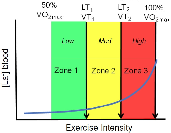 Training intensity for runners is divided into 3 zones. [Photo from runningreform.com]