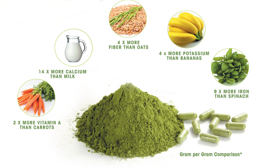 The health benefits of Moringa are underestimated. [Photo source www.freecancerfightinginfo.com]
