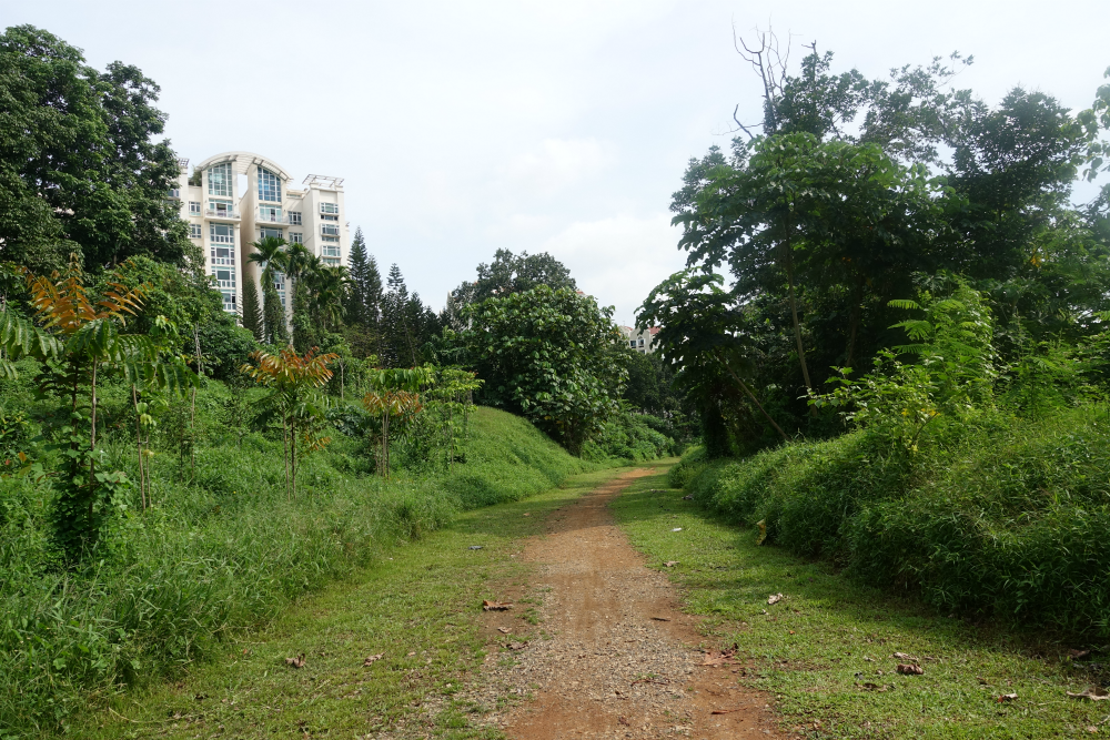 The Green Corridor is truly a spectacular sight in the heart of Singapore CBD.