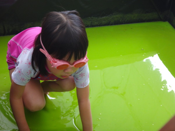 Navigating her way through a slime pool.