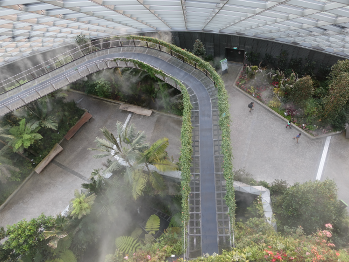 The Cloud Forest in Gardens by the Bay. The Gardens is another Pokemon hotspot now.