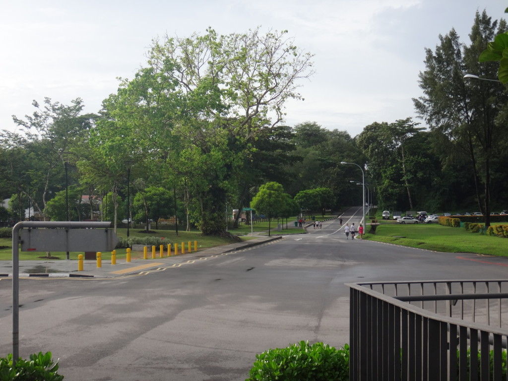 The scenic streets of Punggol.