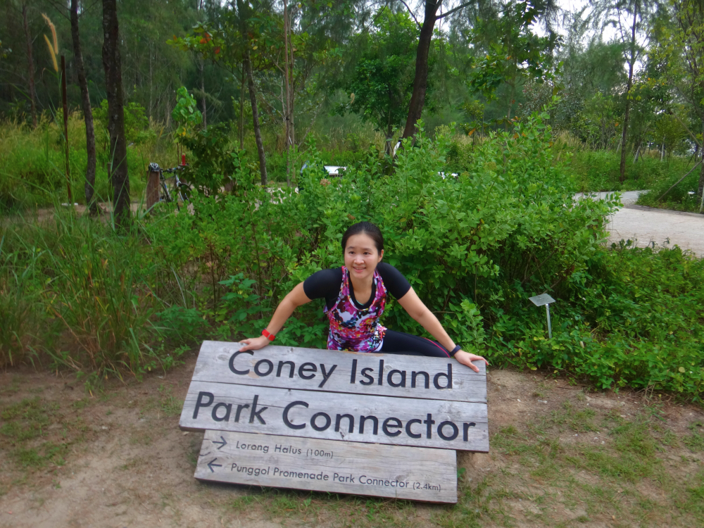 Coney Island Park always feels very natural, rustic and charming.