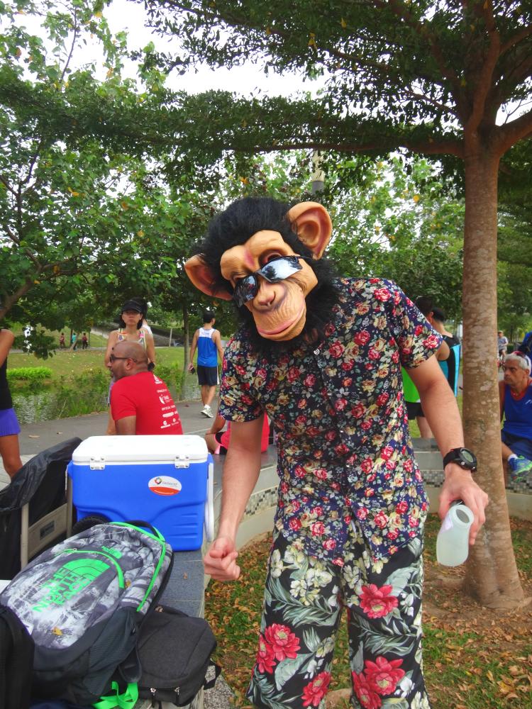 The Monkey.