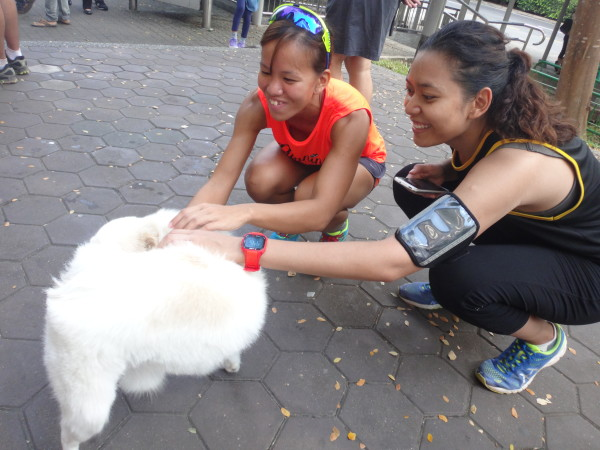 Runners get cozy with a dog.