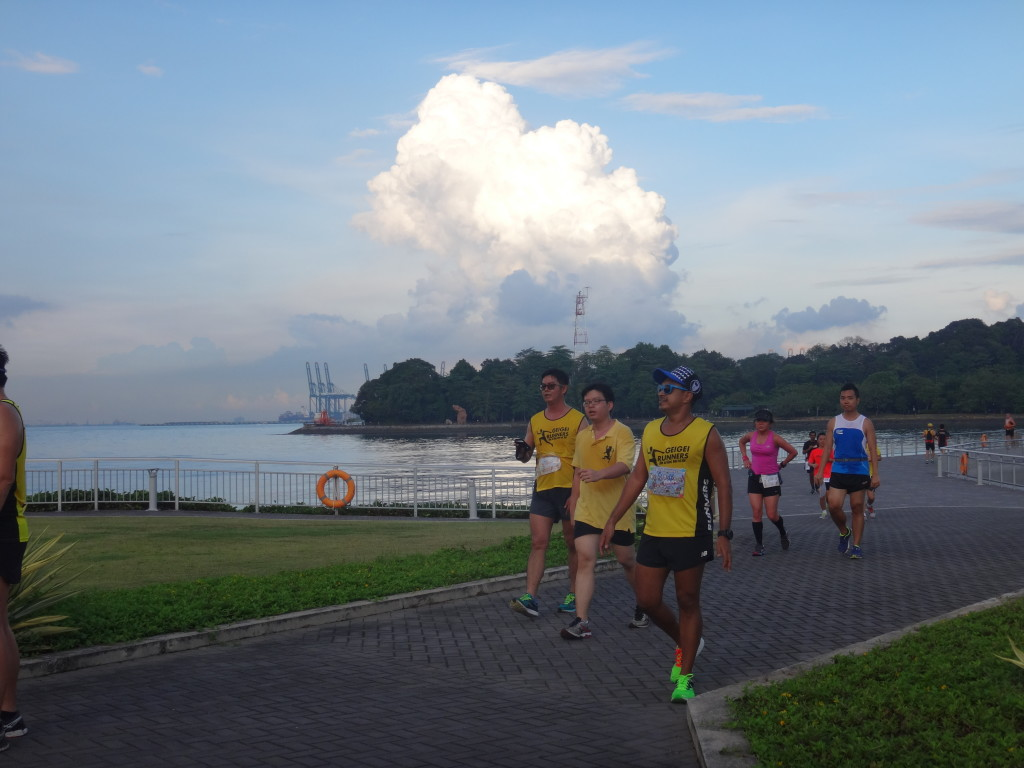 Runners soak up the beautiful scenery.