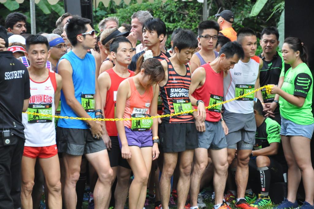Runners in the start pen wait for the race to start.