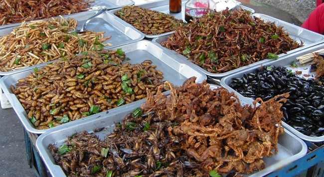 If you typically don't eat deep fried insects, don't eat them before a race. [Photo from paleodietnews.com]