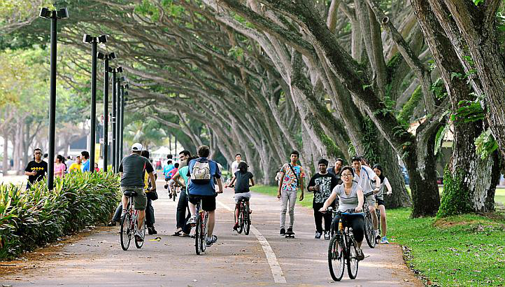 Cyclists would be passing by East Coast Park. [Photo by Straits Times].