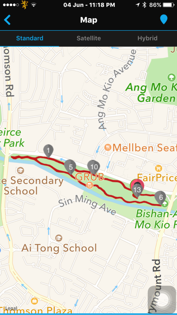 The 3.3km loop for The Great Relay Singapore 2016.