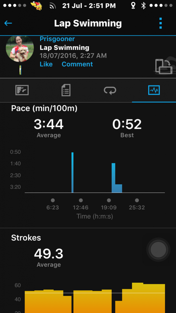 Measurements of swims are quite comprehensive on Garmin Connect.