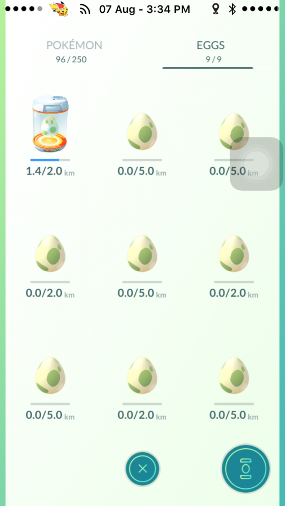 Hatch your Pokemon eggs.