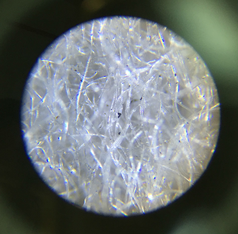 The particles as seen through the microscope.