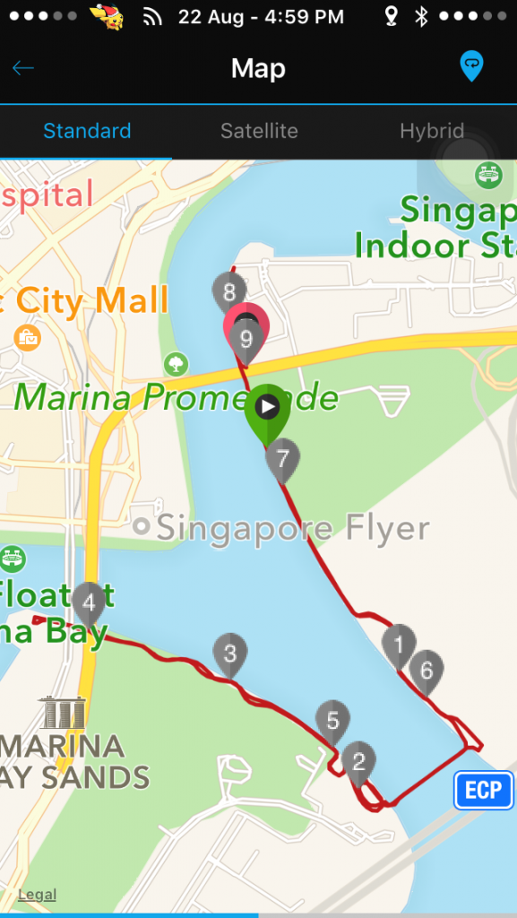 It was a simple out-and-back running route.