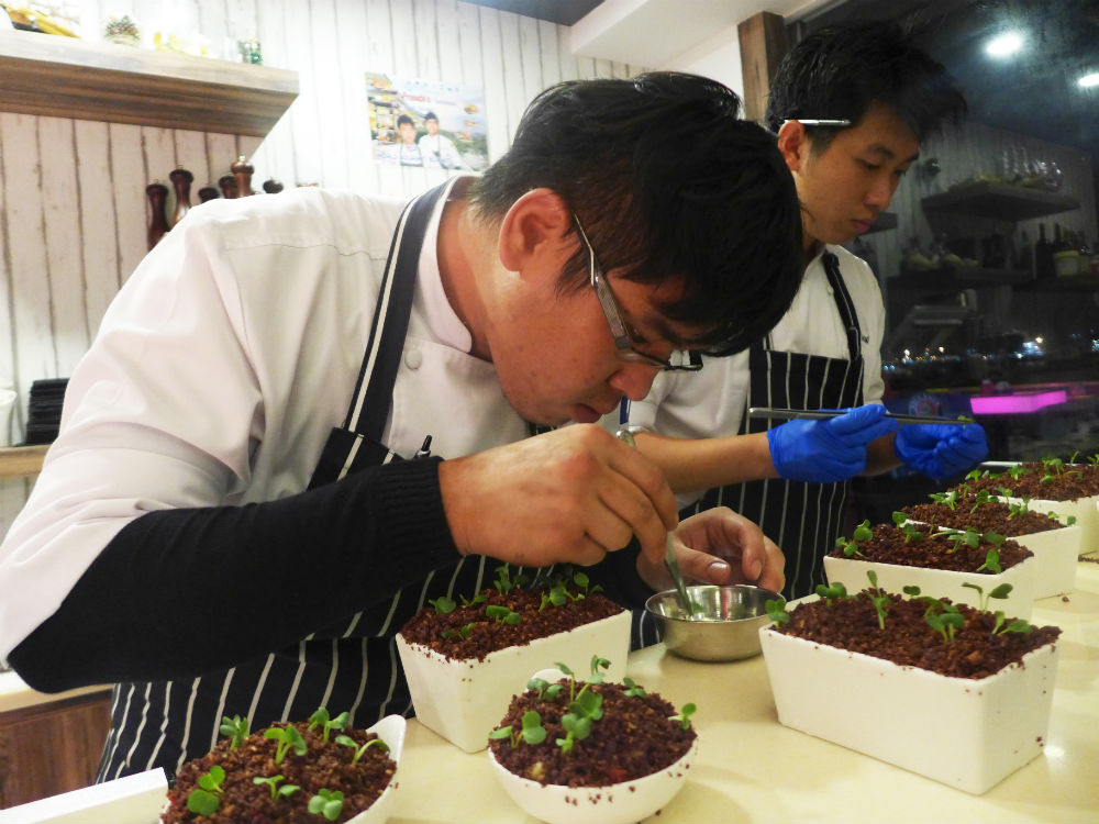Chefs working hard to creat the Garden by the Bay dessert.