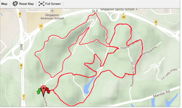 18km Race Route at Energiser Night Race 2015.