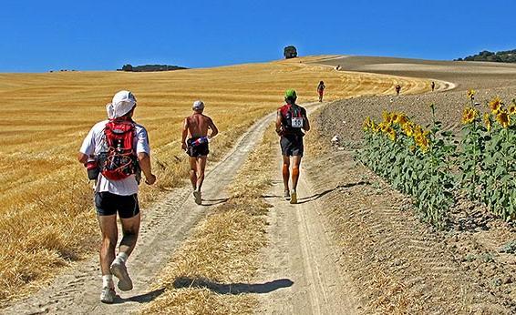 (Photo from www.mynextrace.com)