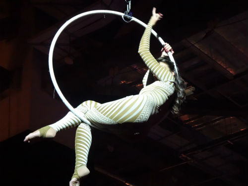Acrobats performed at the party.