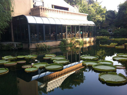 An alfresco bar in Shanghai's scenic People's Park. (Picture courtesy of Jia Zhen).
