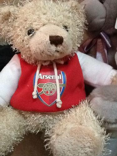 Arsenal FC bear.