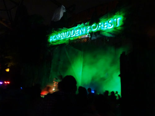 If you come out of the Forbidden Forest alive, thank your lucky stars!