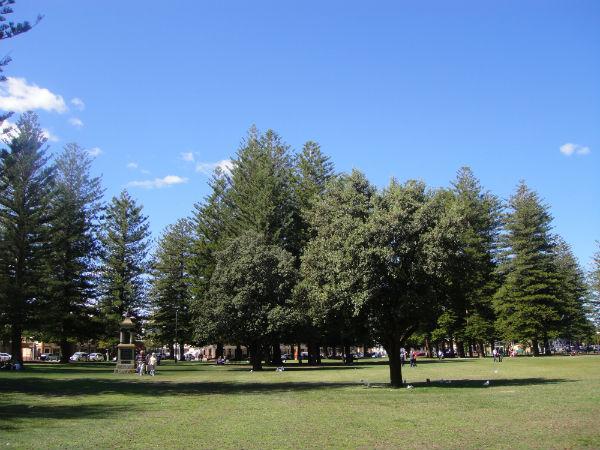 Lush parks in Fremantle, Australia.