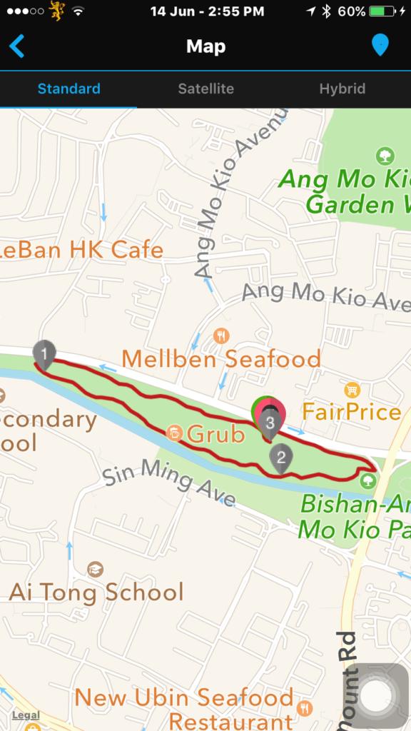 It was a fun run despite the weather.
