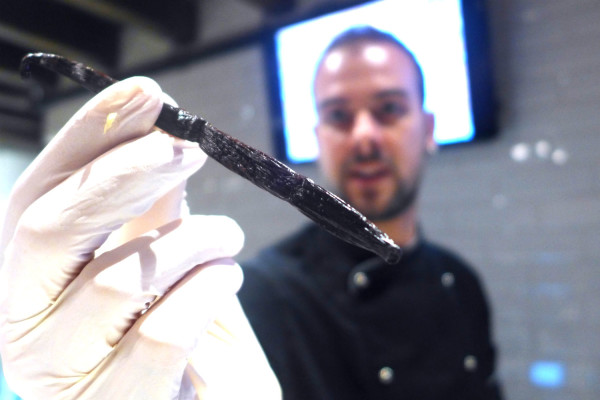 Cadorin & Quaglia use only the freshest ingredients in their gelato - such as these vanilla beans, which was used to make their vanilla flavoured gelato.